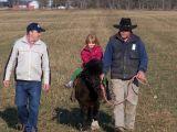 small girl riding a cow